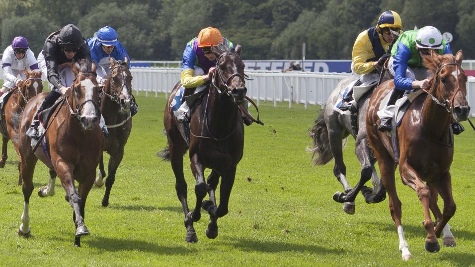 Timeform pick out three bets from South Africa on Thursday